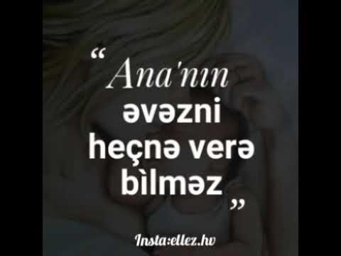 CANIM ANAM.