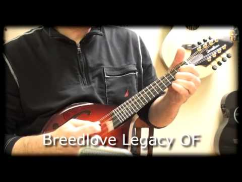 Weber And Breedlove Mandolins Comparison