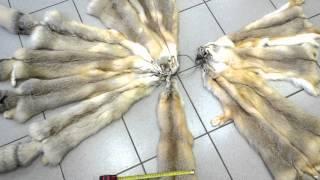 Шкурки корсака выделанные(, 2012-08-24T10:34:33.000Z)