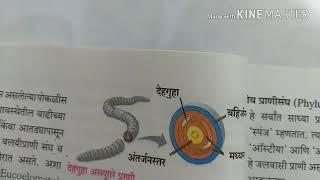 Germ Layers : Diploblastic and Trophoblastic ,Body Cavity , Body Segmentation in Marathi for 10th st