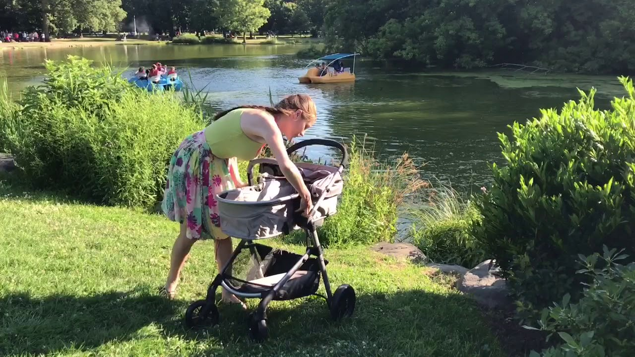 Stroller review   Evenflo Pivot   car seat and stroller review