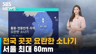 [날씨] 오늘 전국 곳곳 소나기…서울 최대 60mm /…