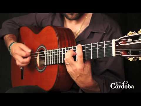 Cordoba Guitars - C9 Cedar