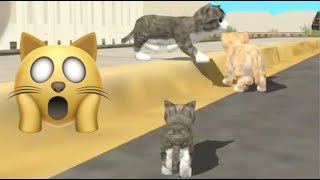 🐱 Cat Sim Online: Play With Cats: Cleo Gives Birth - A Cute Kitten!