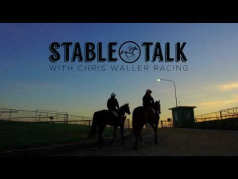 """Stable Talk"" - Weekly Preview - 17th May 2018 - Chris Waller Racing"