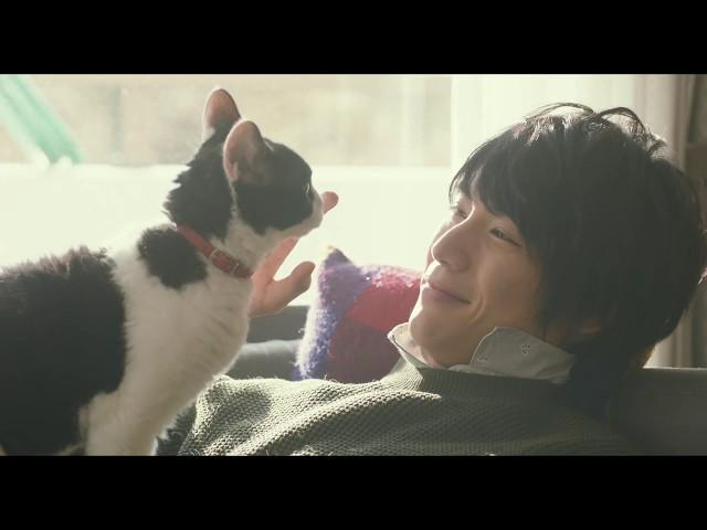 福士蒼汰×猫!映画『旅猫リポート』予告編