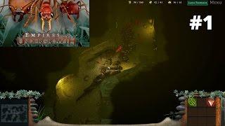 Empires of the Undergrowth #1. Муравьи против подземных креветок
