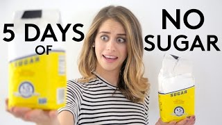 5 days of no sugar try living with lucie refinery29