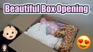 Beautiful Reborn Baby Box Opening  Ts Twins Kelli Maple