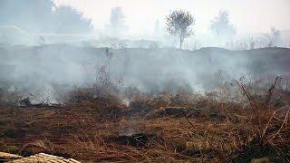 В Одессе сильный пожар - в городе воздух пропитан гарью(В Одессе в районе станции биологической очистки