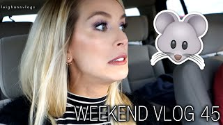 MOUSE IN MY HOUSE! | weekend vlog 45 leighannvlogs