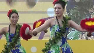 세계문화공연 남태평양연합 하와이 & 타이티 전통춤1, …