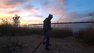 #27  Хороший Клев Рыбы Рыбалка с Берега на Реке Волге Ловля Голавля на Донку Закидушку