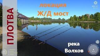Русская рыбалка 4 - река Волхов - Зачетная плотва у ЖД моста
