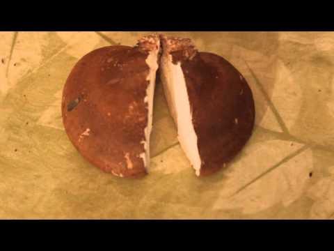 Гриб чага: описание гриба, места распространения, фото