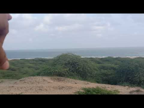 Vijay Villas Palace Aerial View
