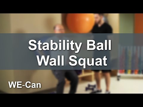 How To Do A Stability Ball Wall Squat Exercise: WE-Can Program