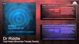MST005 Dr Riddle - Cold Heart (Moonrise Temple Remix) [Uplifting Trance]