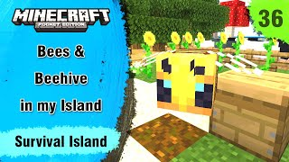 Survival Island #36 - Bees & Beehive in My Island - Minecraft PE | in Hindi