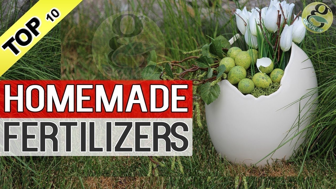 6 ways to make fertilizer for plants with your own hands 5