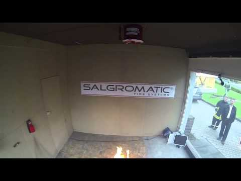 Salgromatic MAG-13 in 30m3 room inside view