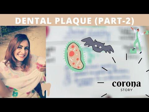 formation of dental plaque biofilm (part-2) carranza