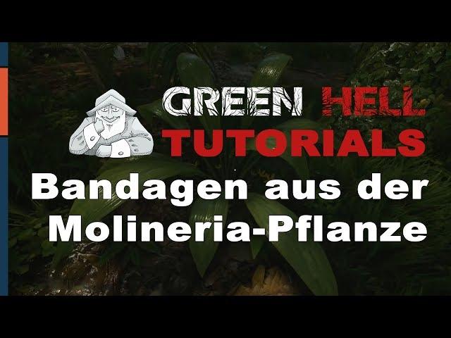GREEN HELL - Tutorial #3 | Wunden versorgen mit Bandage & Verband | Deutsch German Tipps und Tricks