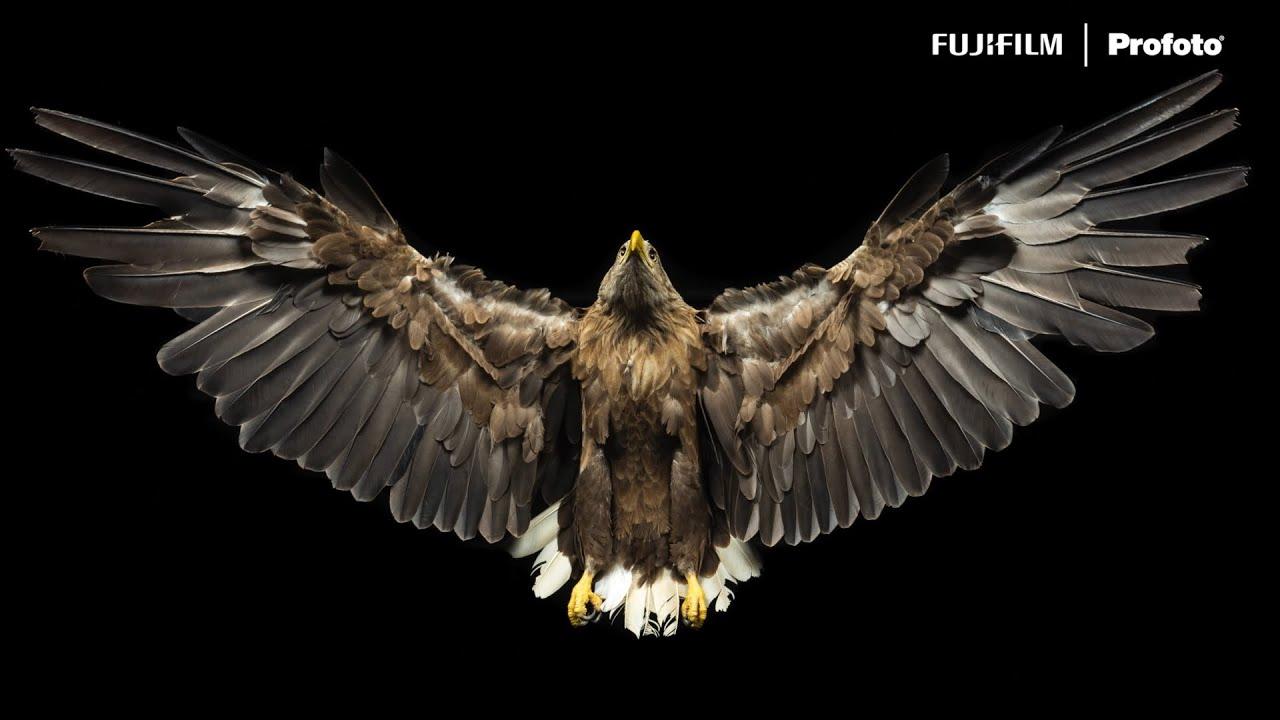 "GFX100S: ""The Alpine Eagle Foundation"" Chapter 2 -Adapt- x Remi Chapeaublanc/ FUJIFILM"