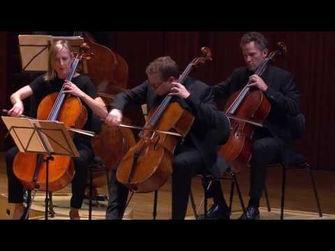 BEETHOVEN (arr. strings) Grosse Fugue, Op.133 | Australian Chamber Orchestra & Richard Tognetti