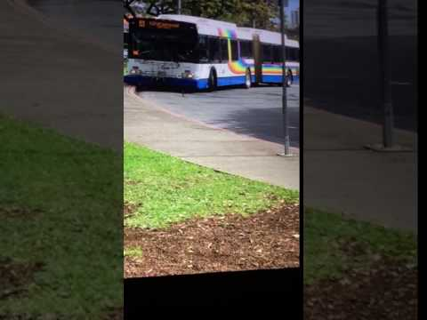 TheBus Honolulu 2002 NewFlyer D60Lf #106 Route A Picture