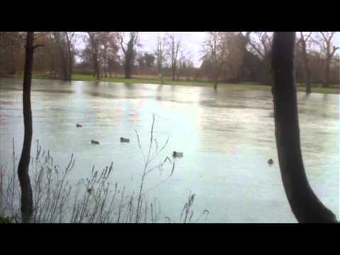 Consequences of Thames Flooding Report Rushes
