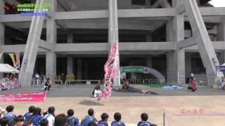 2017 みやぎ県民サッカーの日 よさこい演舞【旗の競演】 thumbnail