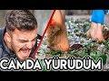 KIRIK CAMLARIN ÜZERİNDE ÇIPLAK AYAK YÜRÜMEK!! # ...