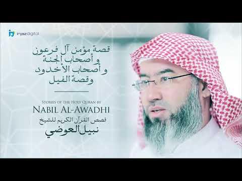 نبيل العوضي -
