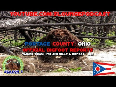 Portage County, Ohio Official Bigfoot Sightings - SLP533