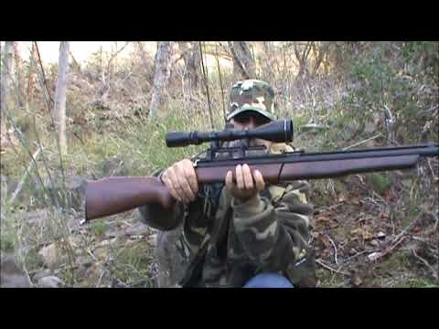 benjamin 392 22 cal survival air rifle shooting demo and discussion