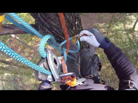 Remontée Sur Corde Avec Matériel D'escalade Petzl - Tree Climbing With Petzl