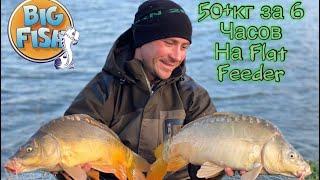 Рыбалка на Flat method feeder Ловля осеннего осторожного Карпа