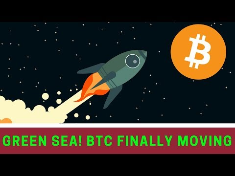 BTC GREEN SEA!! + Positive UK and FSB Reports - Today's Crypto News