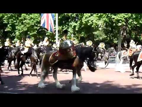 Household Cavalry Band, Trooping the Colour 2017