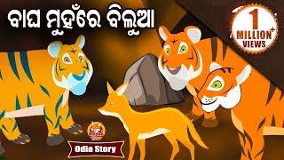 Bagha Muhare Bilua ବାଘ ମୁହଁରେ ବିଲୁଆ Odia Moral Story For Kids | Hooke Hoo Tv