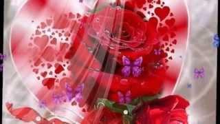 Эти цветы для Вас!(http://bel49.com/obo-mne/moe-uvlechenie/ «ФотоШОУ PRO» - это удобный инструмент для создания анимированных видеороликов из..., 2014-08-28T14:55:08.000Z)