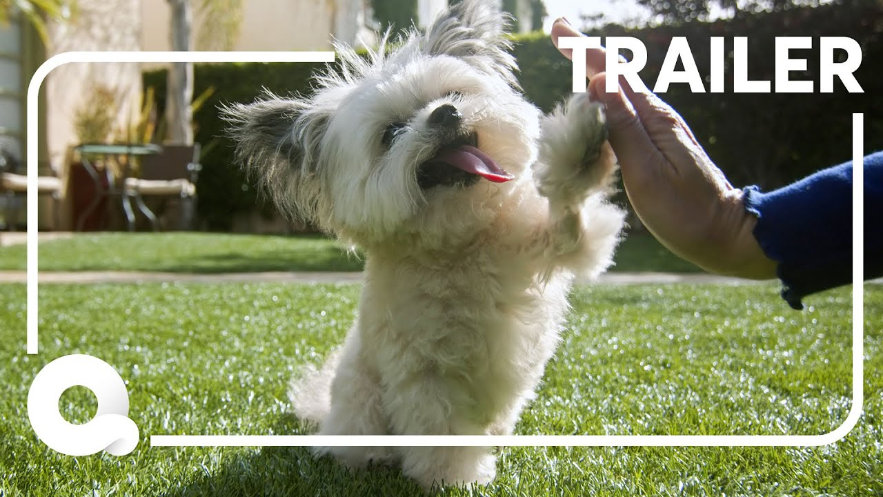 Barkitecture | Official Trailer | Quibi