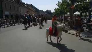 Parada konna na rynku w Pszczynie 2015/Parade horse riding,Pszczyna