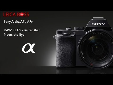 In Depth: Sony A7 and A7r RAW Files - YouTube