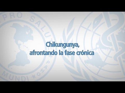 Chikungunya - fase crónica - Jornada arbovirosis 2015 - Argentina