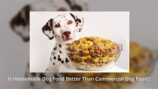 Is homemade dog food better than commercial dog food