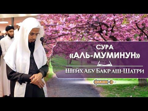 Сура «Аль-Муминун»