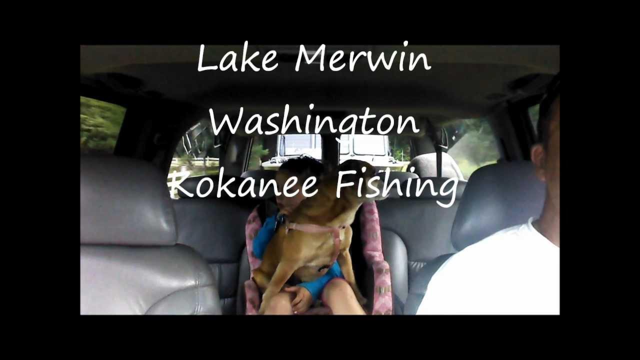 Kokanee Fishing Lake Merwin Youtube