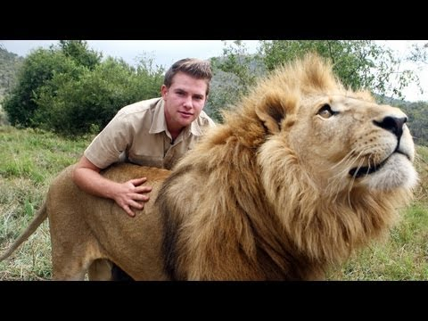 Lion Tamer Teenager In South Africa